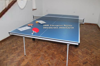Standard Indoor Blue Table Tennis Board